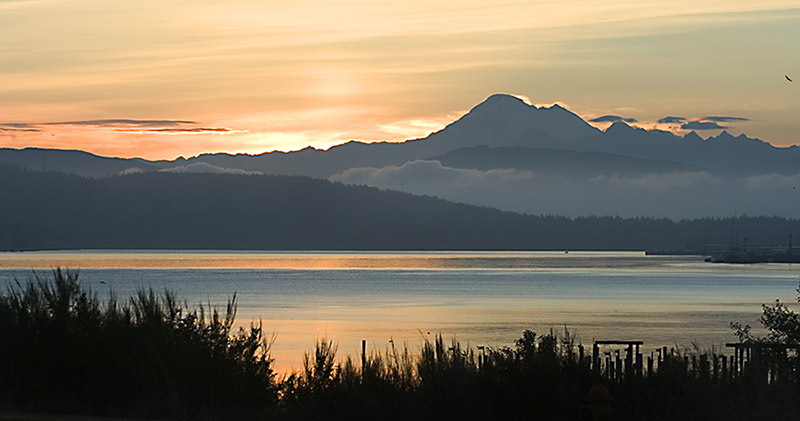Puget-Sound-WashingtonAdobeStock_1924799-v-C-2